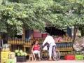 Fruitstal vlakbij de Del Monte ananasplantages bij Buenos Aires
