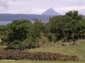 Uitzicht op Volcán Arenal vanaf Monte Terras B&B in Tronadora