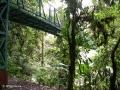 Het nevelwoud van Monteverde staat vol met hangbruggen
