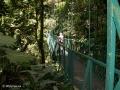 Het nevelwoud van Monteverde