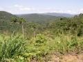 Onderweg van La Fortuna naar Alajuela