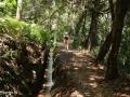 Camacha: wandeling langs de Levada da Serra do Faial