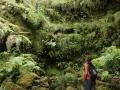 Queimadas: tropische bergwand tijdens de wandeling naar Caldeirão Verde