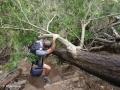 Een wandeling door het jungle-achtige dal van de Ribeira de João Gomes gaat niet zonder uitdagingen