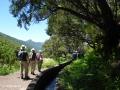 Rabaçal: wandeling langs de Levada das 25 Fontes