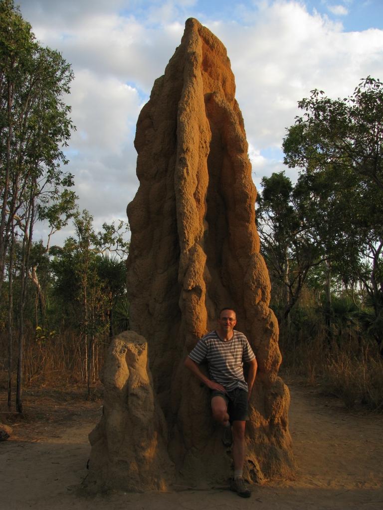Litchfield NP - In Litchfield NP staan deze metershoge termietenheuvels (foto uit 2009)