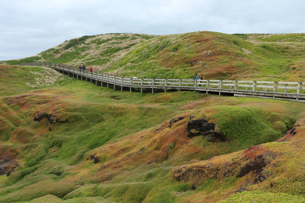 Phillip Island - Boardwalk op Summerland Peninsula