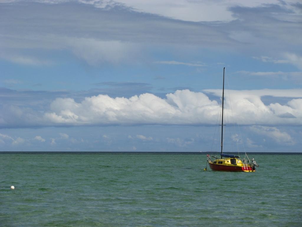 Shark Bay - Nederlandse scheepshistorie in de wateren bij Denham