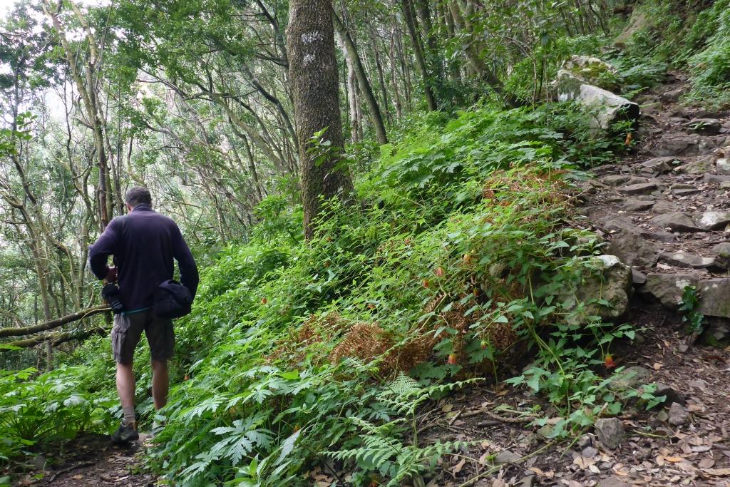 Tijdens de steile, rotsachtige afdaling is het soms oppassen geblazen