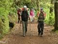 Queimadas: goed begaanbaar pad aan het begin van de wandeling naar Caldeirão Verde