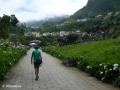 São Vicente: kleurrijk wandelpad tussen het centrum en de zee