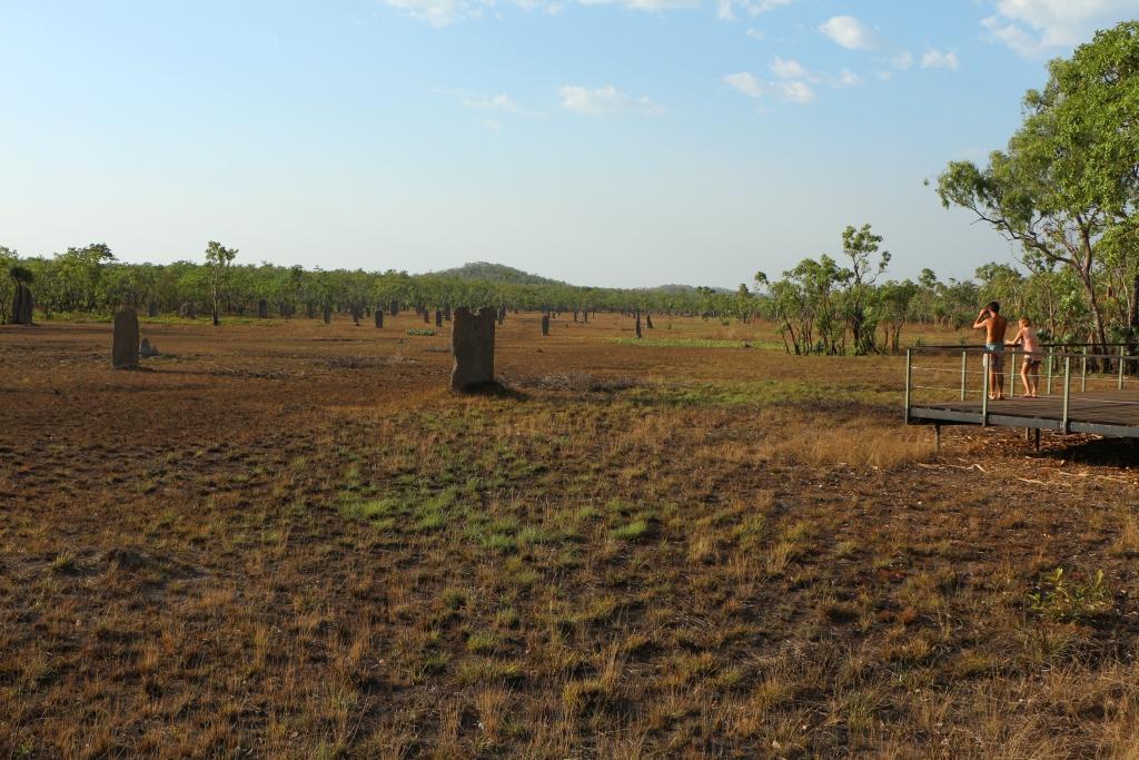 Metershoge termietenheuvels domineren het landschap in het noorden van Litchfield NP.