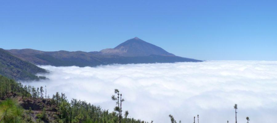 De Teide op Tenerife is al van ver, vanaf een van de uitkijkpunten, te zien. Op een heldere dag lijkt ze zich te hebben toegedekt met een deken van wolken.